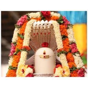 M Rudrabhi Shekam